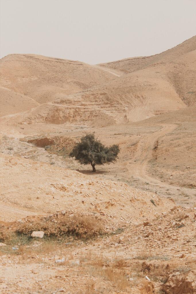 Jericho-Israel