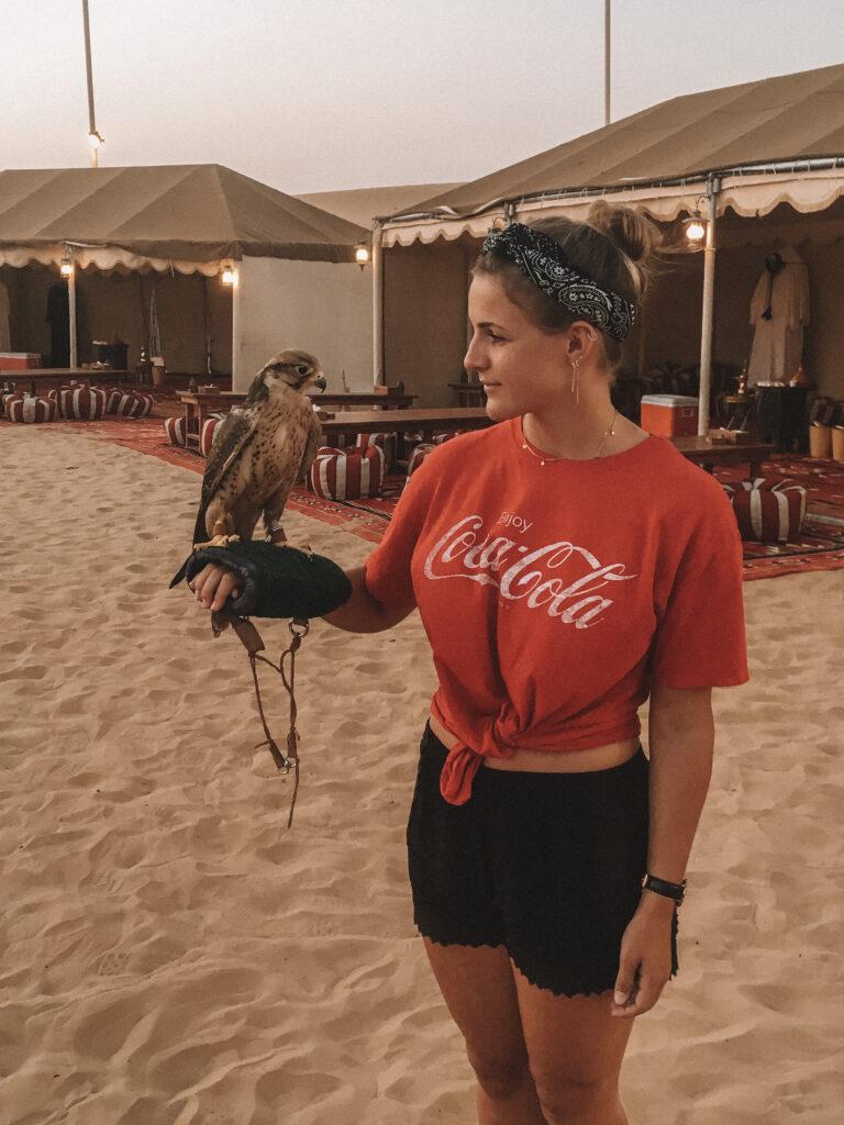 Wuestentour-Dubai