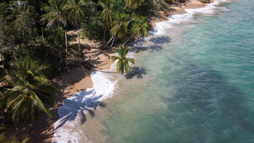 Dronenbild-playa-punta-uva-puerto-viejo-costa-rica