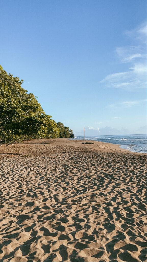 puerto-viejo-de-talamanca-playa-cocles
